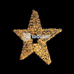 Goldstar 300
